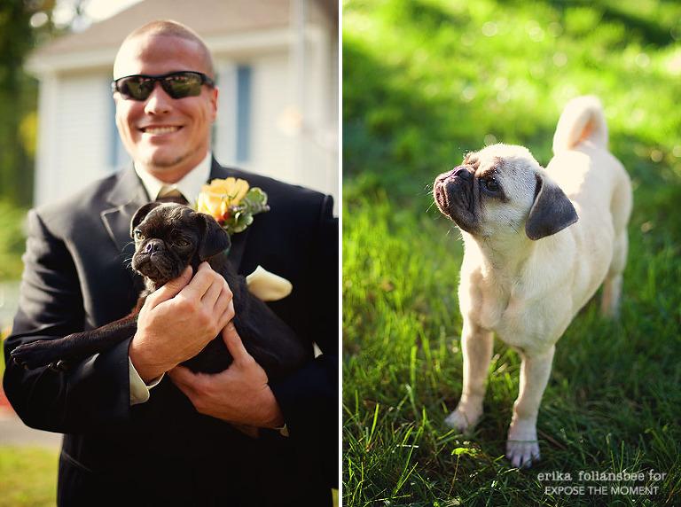 Groomsman in tuxedo holding small pug dog