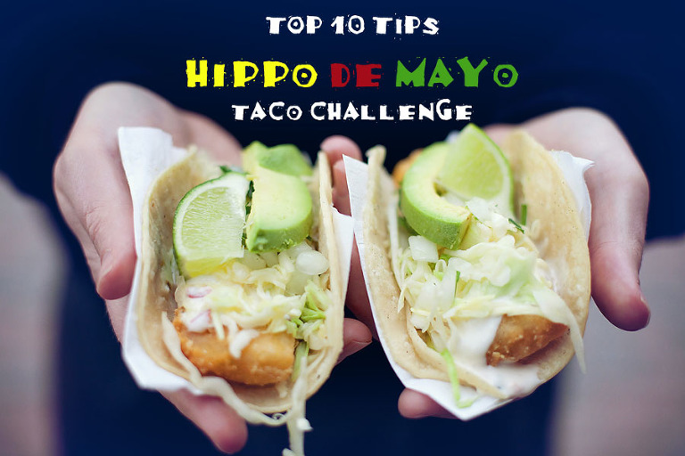 10 tips for hippo de mayo