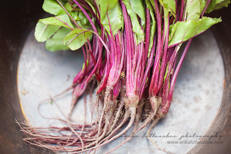 Beet Greens | Local Harvest CSA spring share