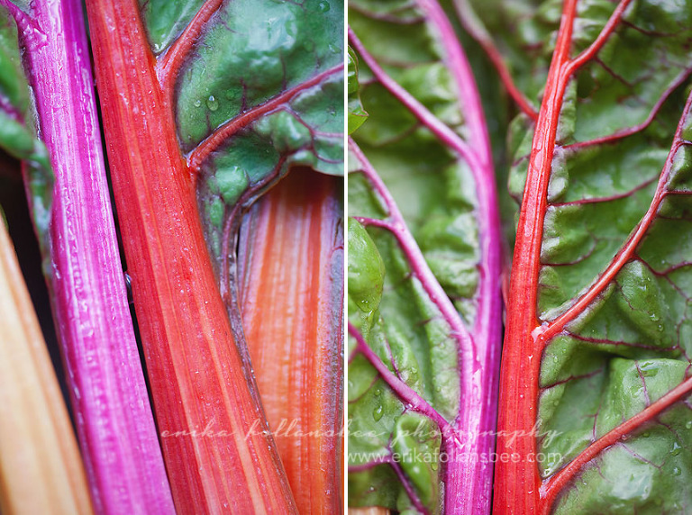 rainbow swiss chard | Local Harvest CSA