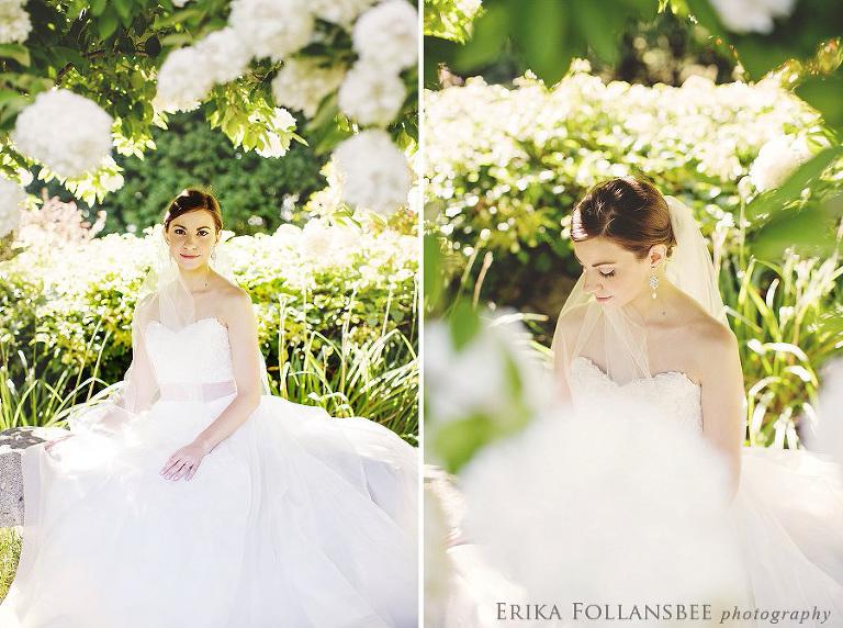 bridal portraits under huge white hydrangea tree